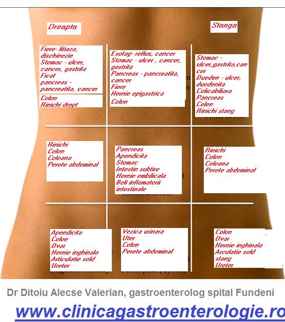 Durerile de abdomen in stanga