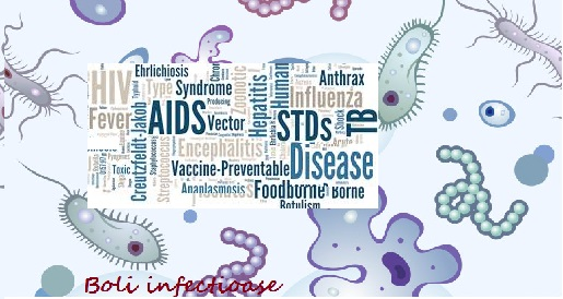 Cu ce se ocupa specialitatea de boli infectioase si transmisibile? Ce inseamna boli infectioase?