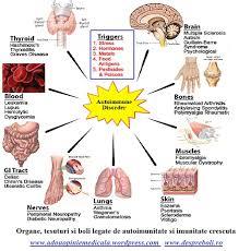 Sistemul imun: componente , functii