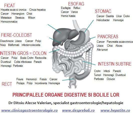 Intrebari de la pacienti- forum gastroenterologie