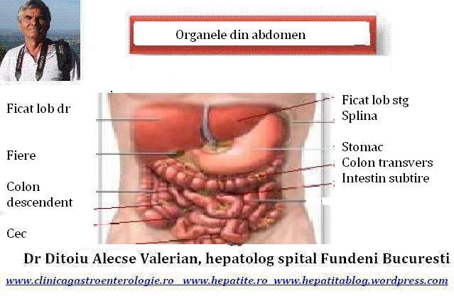 Durerea de stomac, cauze, diagnostic