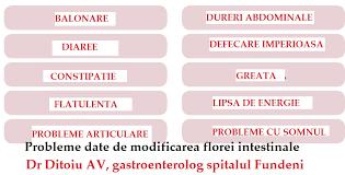 Zgomotele intestinale (bolboroselile intestinale)